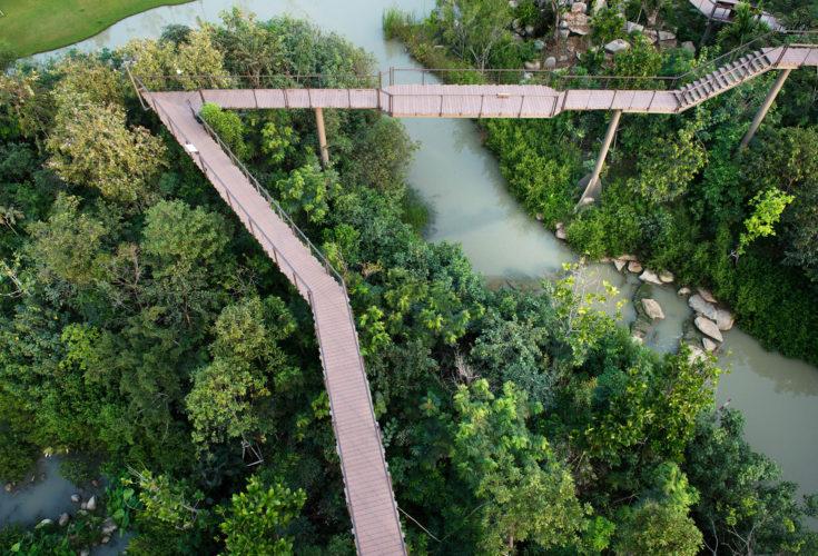 Ptt Metro Forest Landscape Collaboration